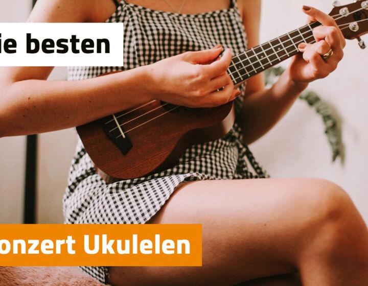 Konzert Ukulele