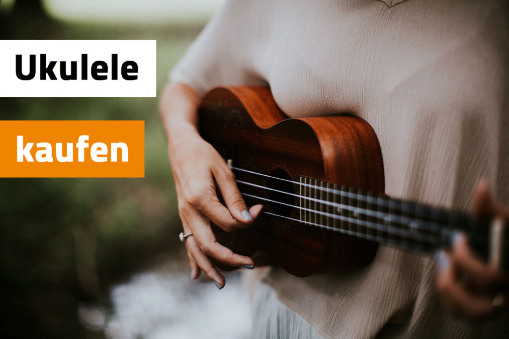 ukulele kaufen