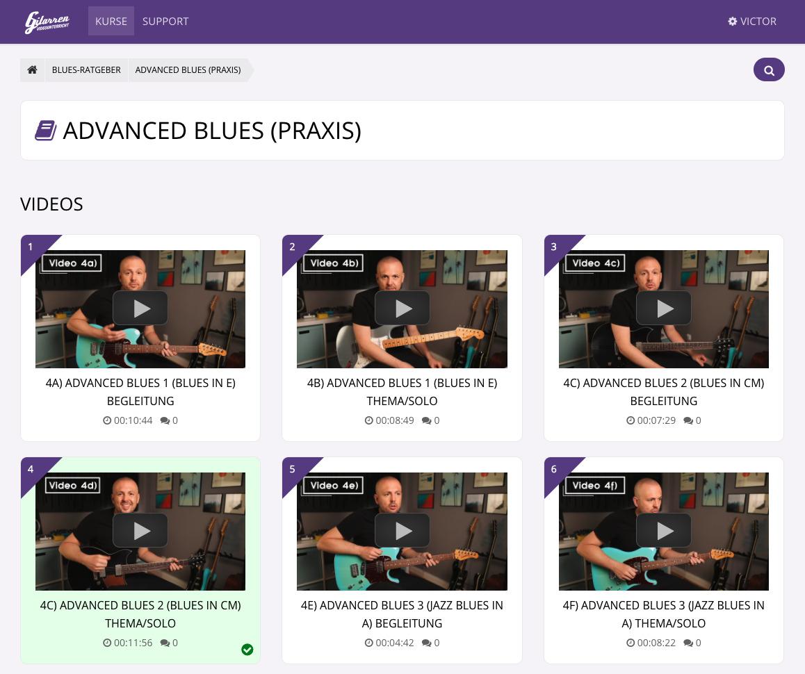 Blues Gitarren Kurs